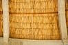 N20101231_155750<br /> <br /> Thatch, Mayan Style