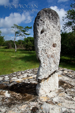 Stelae,  Dzibilchaltun, Yucatan, Mexico