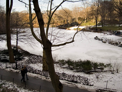 Central Park with late winter snow