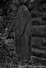 N20121027_223335 (2)<br /> <br /> Mystery Door