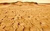 N20070127_0020<br /> <br /> Golden Sands