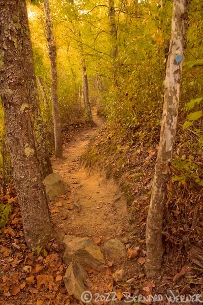N20071007_0403<br /> <br /> Take the Blue Trail