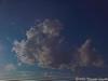 iP20130822_183550<br /> <br /> Cumulus Zebrus