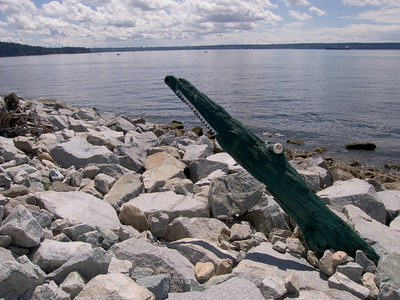 Driftwood art along the seawall at Dundarave Park