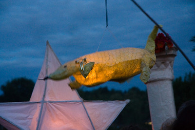 Lantern cruising overhead