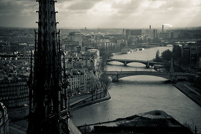 View of Paris atop the Notre Dame Cathedral