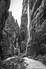 Catwalk Through the Canyon