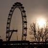 Backlit London Eye
