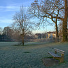 Oxford's South Park at -5.5 degrees on a Friday morning