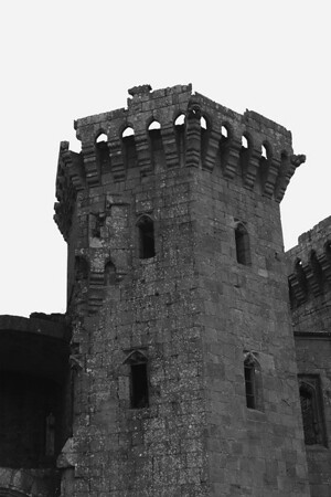 Raglan Castle Tower
