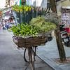 Old Quater - Hanoi.