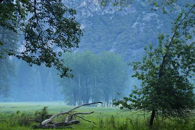 Mist Valley -Yosemite