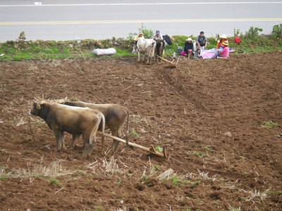 agriculture - just like india