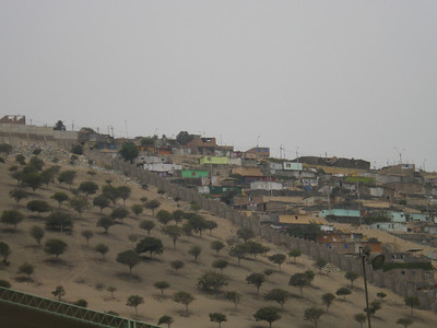 replanted desert and city..., Lima outskirts