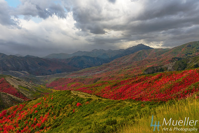 Fall Storm in the Wasatch