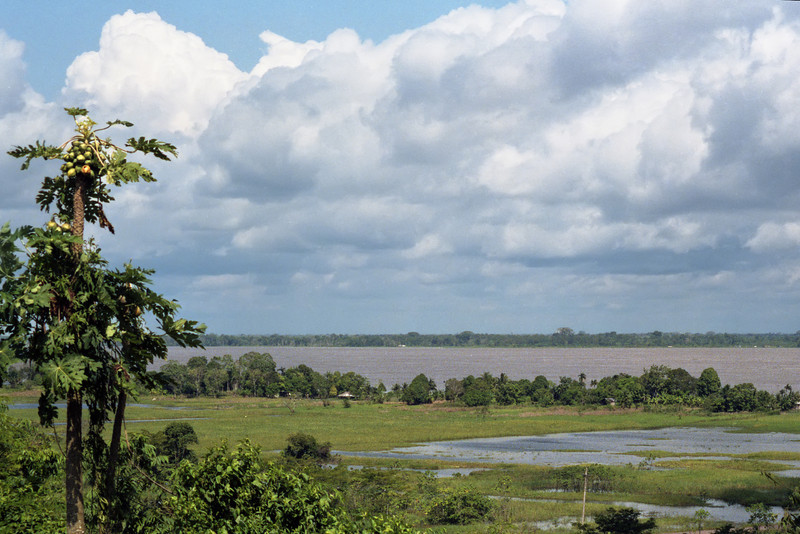Rio Solimões, the other main tributary to the Amazon.