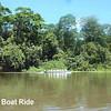 Tortuguero Boat Ride