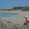 M Beach