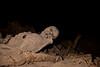 Mummy Behind Yemrehanna Kristos Church, Lalibela