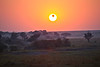A Hot Air Balloon transiting the sun at sunrise on the Masai Mara