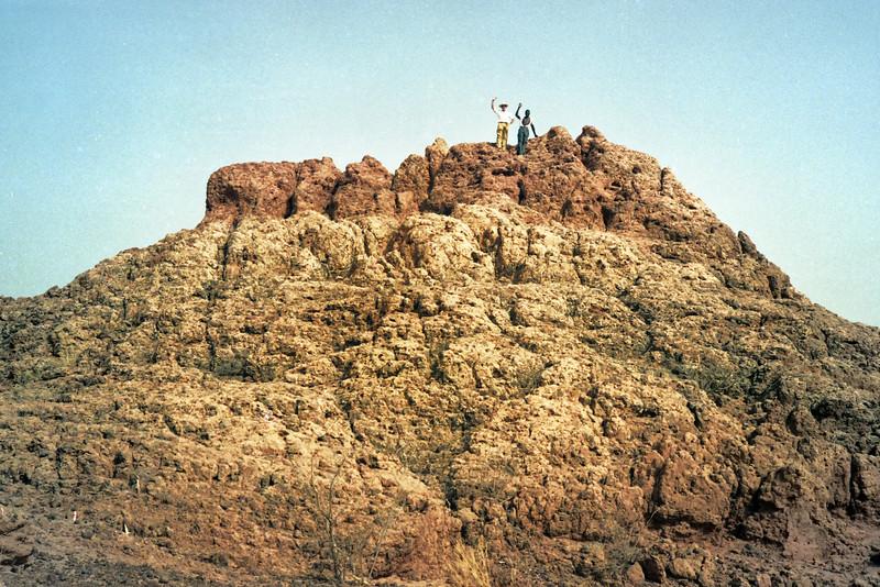 A rare rock outcropping.