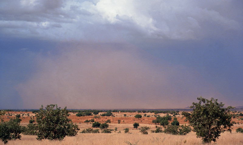 Dust storm brewing