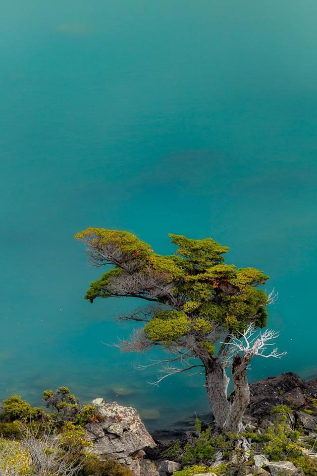 Torres Del Paine_1D-8731-Edit