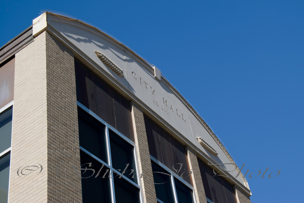 City Hall, Grand Junction, Colorado.  btw... the things on the top of the building is to keep pigeons off the building, they might make a mess on people walking in. ;p