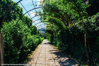 Mirabellgarten, Sound of Music location, Salzburg, Austria