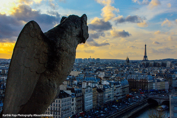 Gargoyle, Paris, France