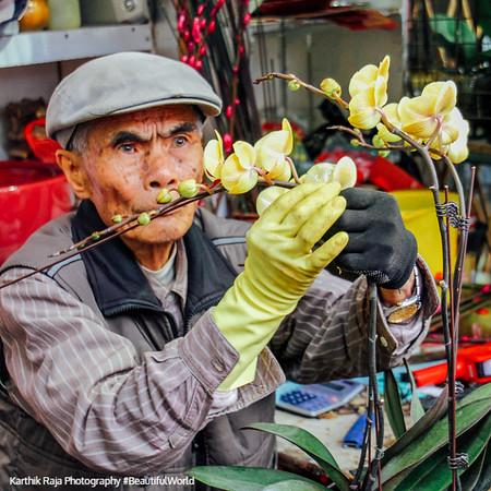 Flower Market, Mong Kok, Hong Kong