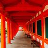Infinity, Sanjūsangen-dō, Rengeō-in, Kyoto, Japan