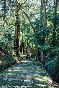 Path to Daito, Narita-san Shinshō-ji Temple, Narita, Japan
