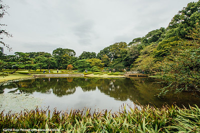 Ninomaru Garden, Edo Castle Gardens, Tokyo Imperial Palace, Tokyo, Japan