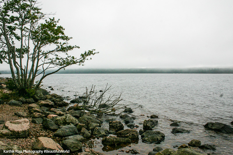 Loch Ness banks, Scotland