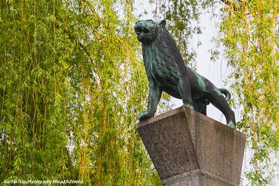 Art, Lion, Zurich, Switzerland