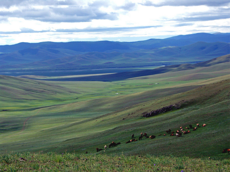The Orkhon Valley on way to Tuvkhun Khiid