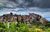 Colorful Corniglia
