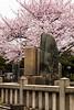 Nishi Nippori cemetery