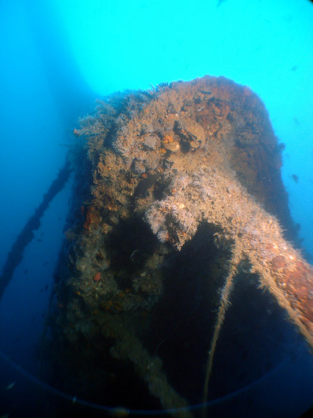Looking up the inverted bow of the Repulse