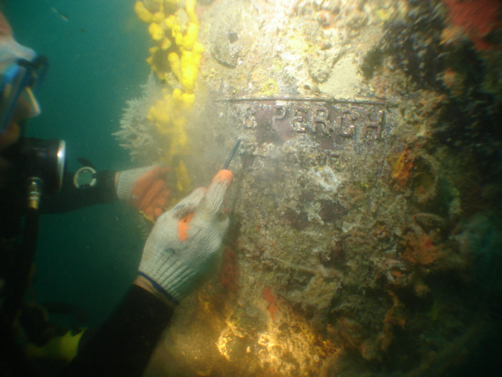 Clearing the growth off the plaque to ID the ship