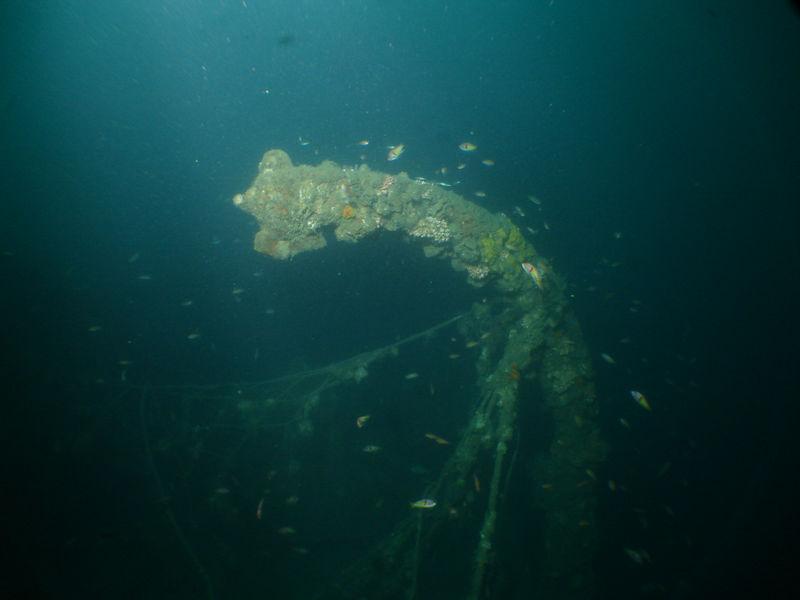 Vacant lifeboat davit