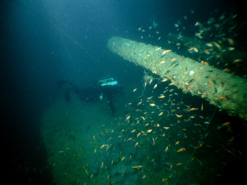 Craig swiming under one of the stern guns