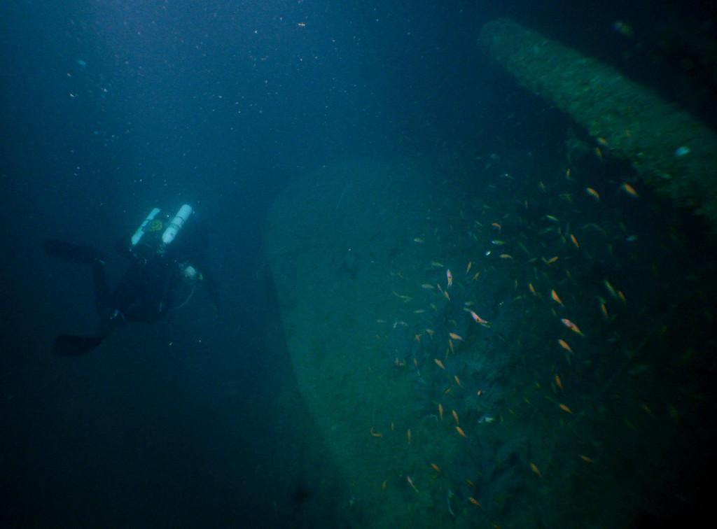 Craig swiming at the stern