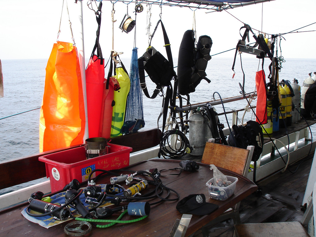 Drying the gear on the sail back