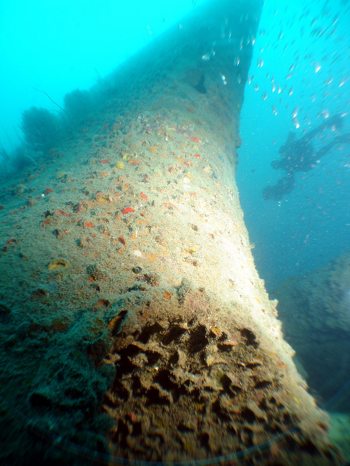 Looking up the inverted bow of the Campinila from the sea bed as Chris scooter past