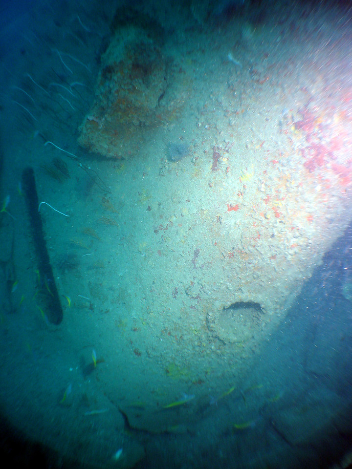 Inverted bow of Campinila sinking into sea bed