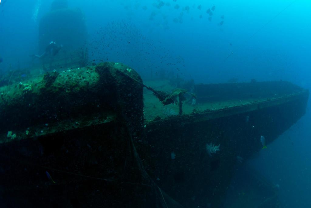 Diver swims over wheel house towards port bridge wing