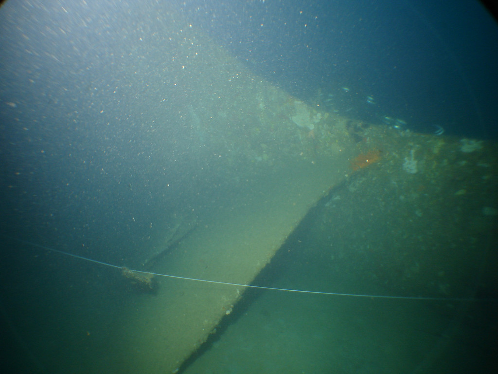 Tail section of B26? and my line