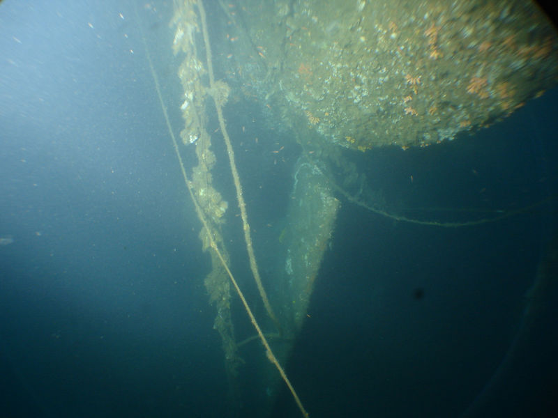 Rudder of Kyo Maru 70m